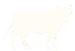 fromagerie en ligne
